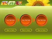Sunflower PowerPoint Template#5