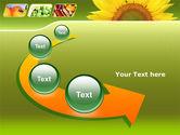 Sunflower PowerPoint Template#6
