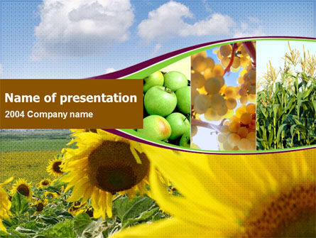 Agriculture: Sunflower, Apple, Grape And Corn PowerPoint Template #00076