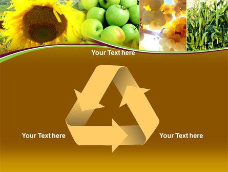 Sunflower Apple Grape And Corn PowerPoint Template Slide 10