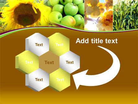 Sunflower Apple Grape And Corn PowerPoint Template Slide 11