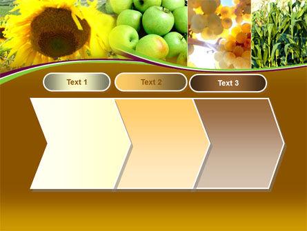Sunflower Apple Grape And Corn PowerPoint Template Slide 16