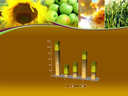 Sunflower Apple Grape And Corn PowerPoint Template Slide 17