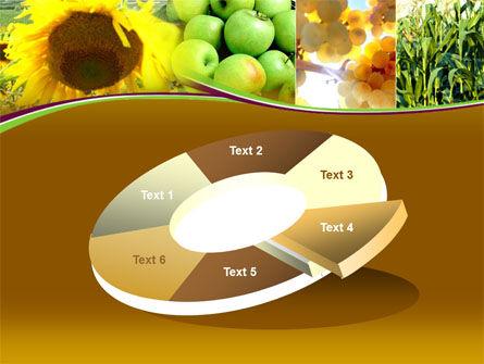 Sunflower Apple Grape And Corn PowerPoint Template Slide 19
