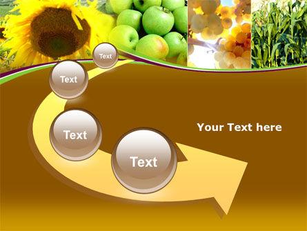 Sunflower Apple Grape And Corn PowerPoint Template Slide 6