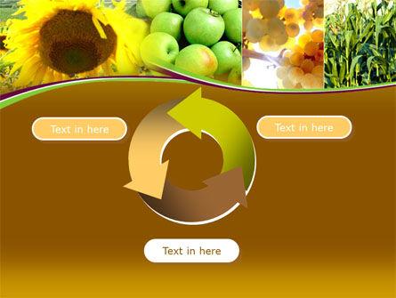 Sunflower Apple Grape And Corn PowerPoint Template Slide 9