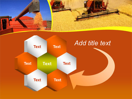 Wheat Harvesting PowerPoint Template Slide 11