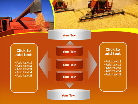 Wheat Harvesting PowerPoint Template Slide 13