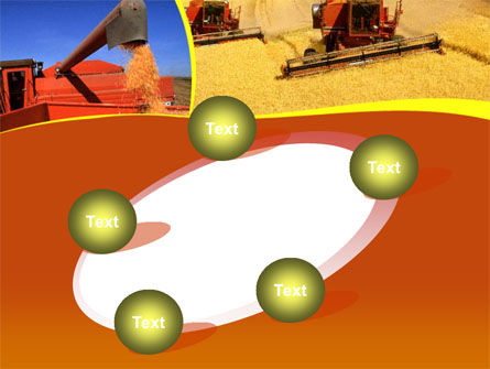 Wheat Harvesting PowerPoint Template Slide 14