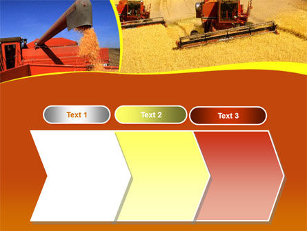 Wheat Harvesting PowerPoint Template Slide 16