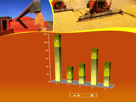 Wheat Harvesting PowerPoint Template Slide 17