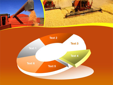 Wheat Harvesting PowerPoint Template Slide 19