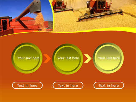 Wheat Harvesting PowerPoint Template Slide 5