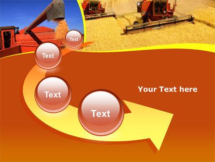 Wheat Harvesting PowerPoint Template Slide 6