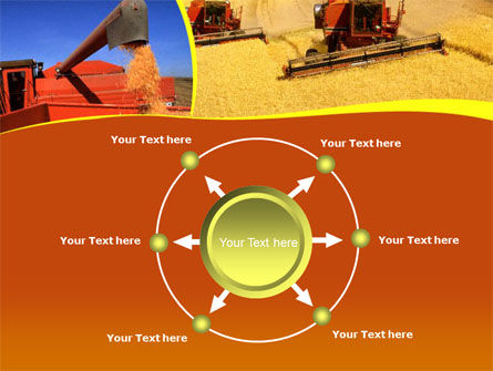 Wheat Harvesting PowerPoint Template Slide 7