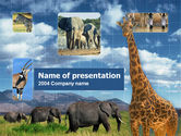 Animals and Pets: African Animals PowerPoint Template #00187