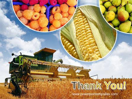 Corn Harvester PowerPoint Template Slide 20