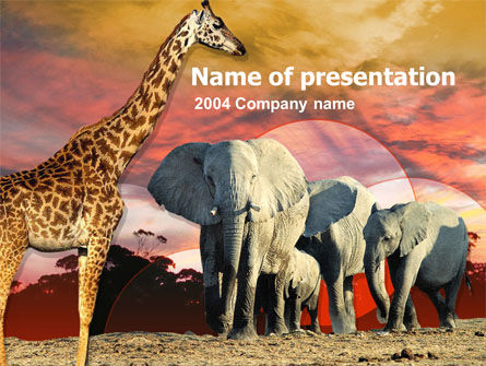 Animals and Pets: African Wildlife PowerPoint Template #00191