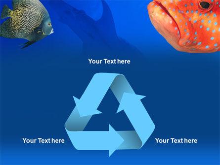 Fish In Aquarium PowerPoint Template Slide 10