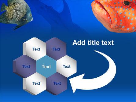 Fish In Aquarium PowerPoint Template Slide 11