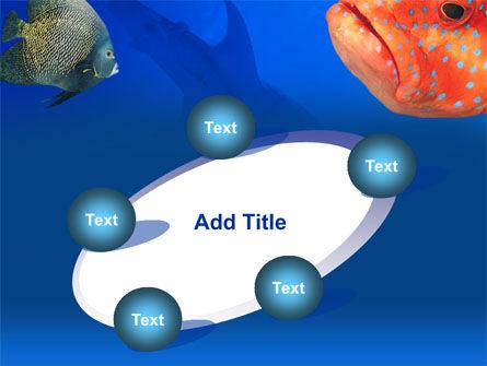 Fish In Aquarium PowerPoint Template Slide 14