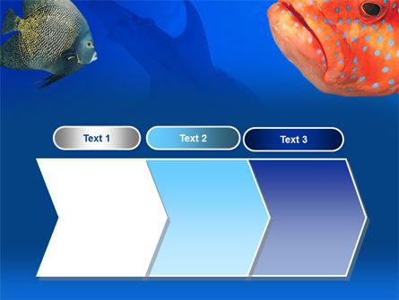 Fish In Aquarium PowerPoint Template Slide 16