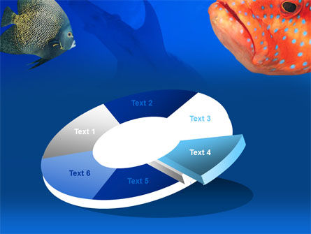 Fish In Aquarium PowerPoint Template Slide 19