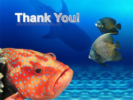 Fish In Aquarium PowerPoint Template Slide 20