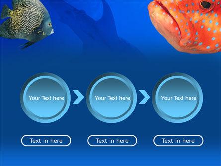 Fish In Aquarium PowerPoint Template Slide 5