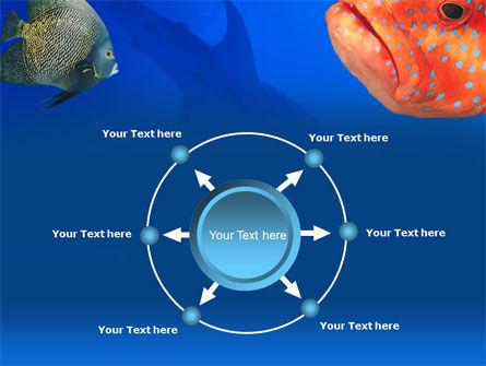 Fish In Aquarium PowerPoint Template Slide 7