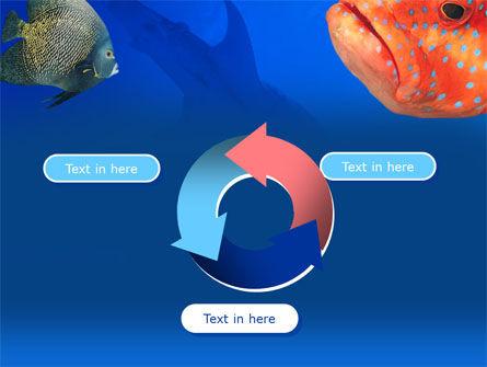 Fish In Aquarium PowerPoint Template Slide 9