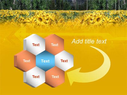 Alpine Flowering Meadows PowerPoint Template Slide 11