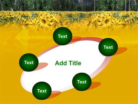 Alpine Flowering Meadows PowerPoint Template Slide 14