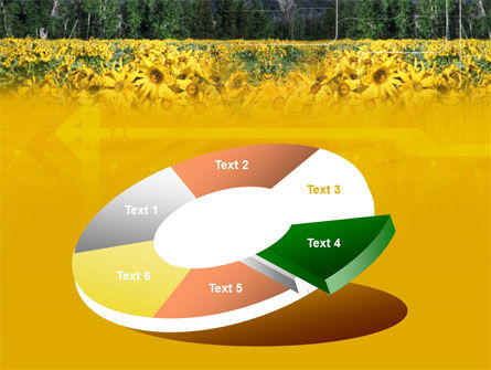 Alpine Flowering Meadows PowerPoint Template Slide 19