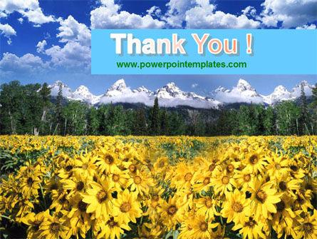 Alpine Flowering Meadows PowerPoint Template Slide 20