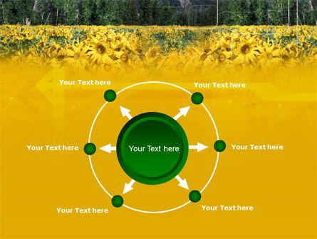 Alpine Flowering Meadows PowerPoint Template Slide 7