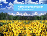 Nature & Environment: Plantilla de PowerPoint - prados florecientes alpinos #00295