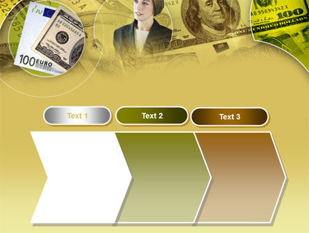 Lady Financier PowerPoint Template Slide 16