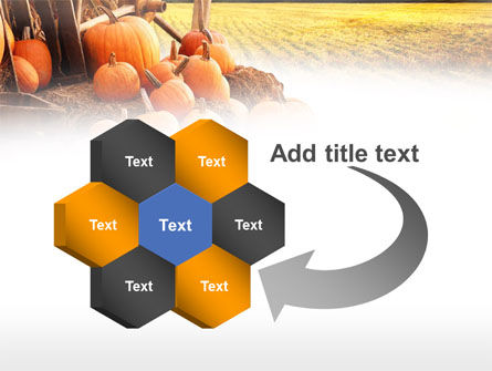 Pumpkin Field PowerPoint Template Slide 11