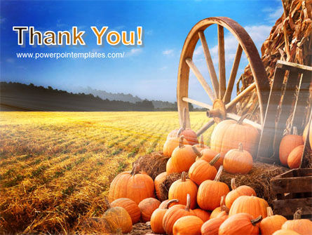 Pumpkin Field PowerPoint Template Slide 20
