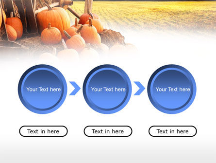 Pumpkin Field PowerPoint Template Slide 5