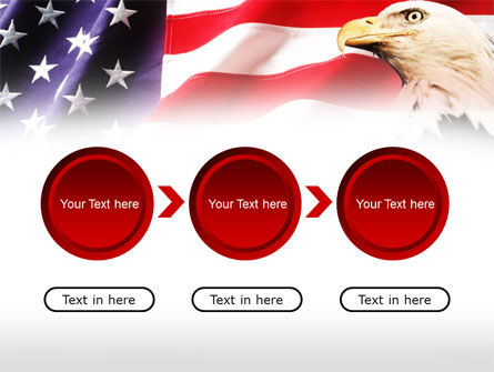 American Bald Eagle PowerPoint Template Slide 5