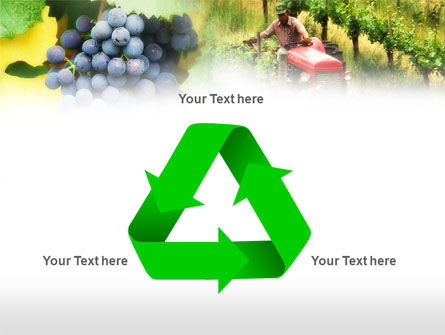 Grape Field PowerPoint Template Slide 10