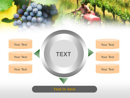 Grape Field PowerPoint Template Slide 12