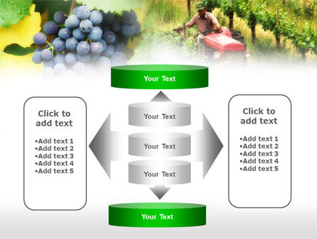 Grape Field PowerPoint Template Slide 13