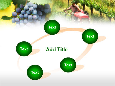 Grape Field PowerPoint Template Slide 14