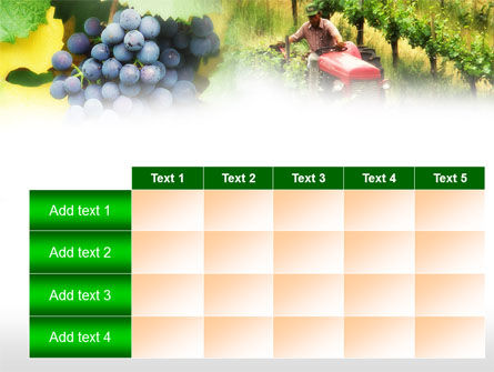Grape Field PowerPoint Template Slide 15
