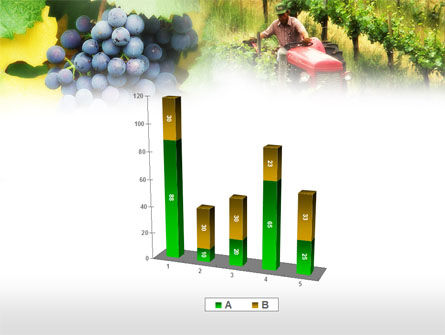 Grape Field PowerPoint Template Slide 17