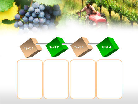 Grape Field PowerPoint Template Slide 18