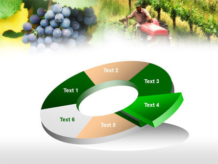 Grape Field PowerPoint Template Slide 19